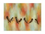 Birds of Summer III