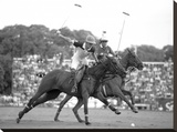 Polo players  Argentina