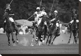 Polo players  New York