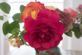 Rose Close-Up In A Speckled Vase