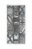 Patterns Of The Amazon VI BW
