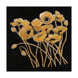 Gold Black Line Poppies I v2