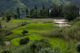 A Home Surrounded By Terraced Rice Paddie On The Outskirts Of Gangtok