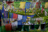 Prayer Flags At Khecheopalri Lake  Sacred To Hindus And Buddhists