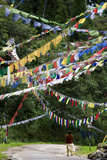 Prayer Flags Hanging Over A Road Passing Through Lush Hills