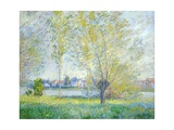 Willows at Vetheuil  1880
