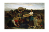 The Colza (Harvesting Rapeseed)  1860