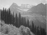 "Trees And Bushes In Foreground Mountains In Bkgd ""In Glacier National Park"" Montana 1933-1942"