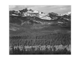 "View Of Trees And Snow-Capped Mts ""Long's Peak From Road Rocky Mountain NP"" Colorado 1933-1942"