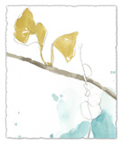 Ginkgo on Dusty Teal II