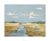 Summer Wetland II