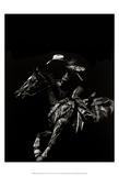 Scratchboard Rodeo I Reproduction d'art par Julie T. Chapman