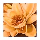 Flor de Loto I