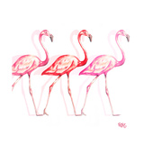 Flamingo Trio I