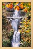 Autumn at Multnomah Falls  Portrait  Hood River  Columbia River Gorge  Oregon