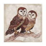 Two Owls II