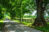 Cumberland County II