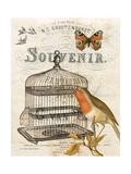 Music Bird II