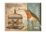 Bird & Cage II