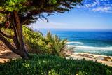 Del Mar Beach I