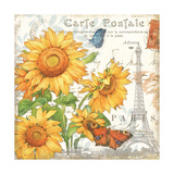 Carte Postale Sunflowers II