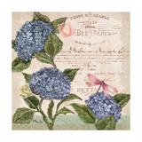 Parisian Hydrangeas I