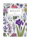 Botany Vintage Floral Card Vector Illustration of Style Engravings Colorful Flowers with Blue Ou