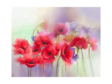 Watercolor Red Poppy Flowers Painting Flower Paint in Soft Color and Blur Style  Soft Green and Pu