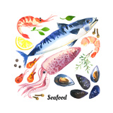 Mackerel Scomber Watercolor Set of Sea Food with Trout  Salmon and Mussels Drawn by Hand on a Whi