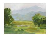 Mountain Backdrop III