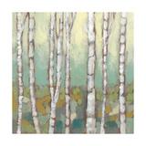 Kaleidoscope Birches I