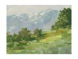 Mountain Backdrop I