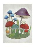 Mushroom Collection II
