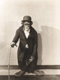 Monkey Dressed in Tight Overcoat and Bowler Hat