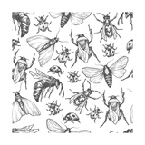 Hand Drawn Vector Pattern with Insects in Different Poses Moth  Butterfly  Bee  Bumblebee  Ladybug