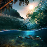 Tropical Paradise Template with Sunlight Ocean Surfing Wave Breaking and Two Big Green Turtles Div