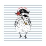 Owl Pirate  Nautical Poster  Hand Drawn Animal Illustration
