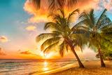 Beautiful Sunset over the Sea with a View at Palms on the White Beach on a Caribbean Island of Barb