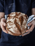 Baker Man Holding Rustic Organic Loaf of Bread in Hands - Rural Bakery Natural Light  Moody Backgr