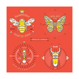 Set of Vintage Thin Line Insects Labels & Badges Retro Vector Design Graphic Element  Emblem  Logo