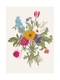 Victorian Bouquet Spring Flowers Poppy  Anemones  Tulips  Delphinium Vintage Botanical Illustrat