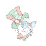 Pitbull in an Unusual Hat and Sunglasses Vector Illustration Funny Dog