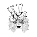 Funny Dog in an Unusual Hat and Sunglasses Vector Illustration