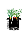 Grow Vegetable Garden and Cook Soup Food Illustration in Black Ink and Colors Vector Eps8