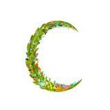 Letter C Floral Latin Decorative Character Alphabet Lettering Sign Colorful Hand Drawn Blooming Fl