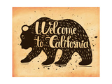 Vintage Handlettering the Poster California Usa the Silhouette of a Wild Bear with Text Vector Il