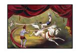 Circus 013