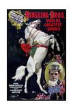 Circus 005