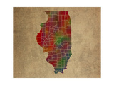 IL Colorful Counties
