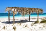 Cuba Fuerte Collection - Arbor Beach